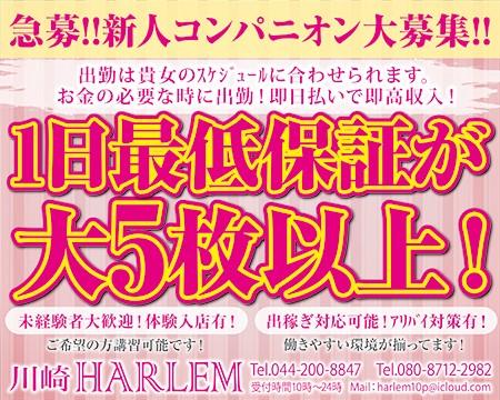 HARLEM~ハーレム~の求人バナー