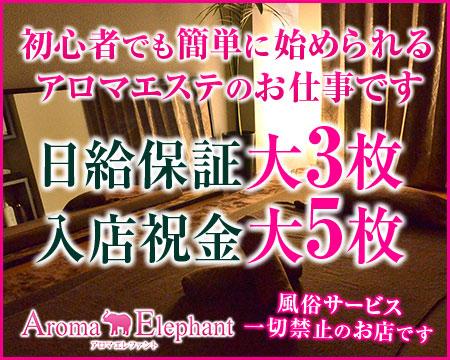 Aroma Elephant(アロマエレファント)