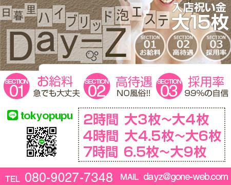Day-z(デイジー)