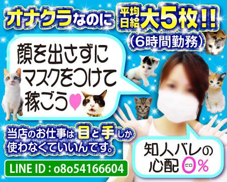 キティーズテラス横浜店