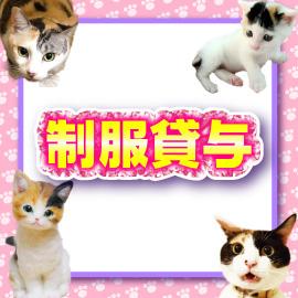 キティーズテラス 渋谷店の求人情報画像10