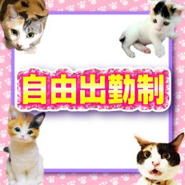 キティーズテラス 渋谷店の求人情報画像6