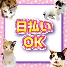 キティーズテラス 渋谷店の求人情報画像5