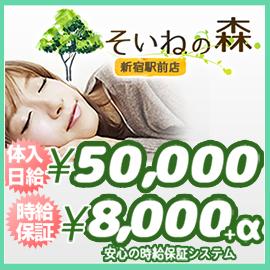 そいねの森 新宿駅前店の求人情報画像10