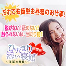 ひだまり添い寝館 新橋店の求人情報画像8