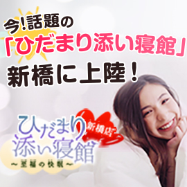ひだまり添い寝館 新橋店の求人情報画像7