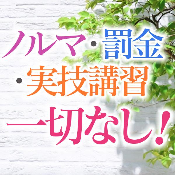 横浜熟女MAXの求人情報画像3